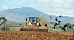Keath Lucas getting the seed bed ready for barley in Killenane Co Carlow. Photo Roger Jones.