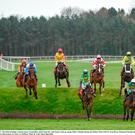Punchestown kicks off today