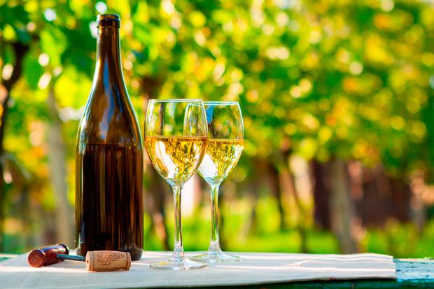 'Aromatic, vivid and distinctive': Sauvignon blanc