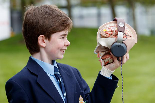 Gavin Bowen O'Connor (13) from Castleknock College with his project, 'The Effects of Music on the Brain'. Picture: Andres Poveda