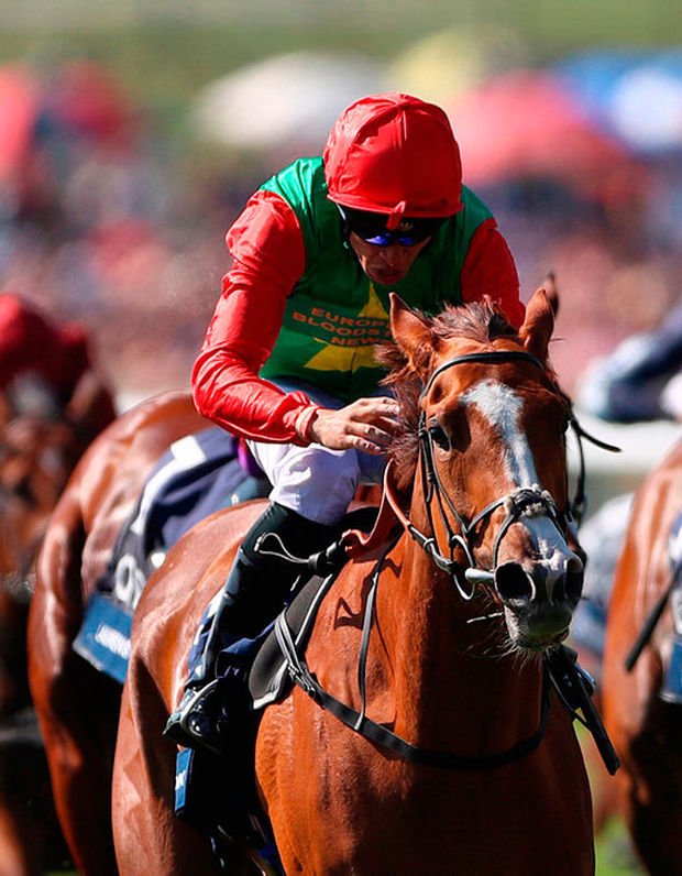 Billesdon Brook ridden by jockey Sean Levey coming home to win the Qipco 1000 Guineas Stakes during day two of the QIPCO Guineas Festival at Newmarket Racecourse. Photo: PA