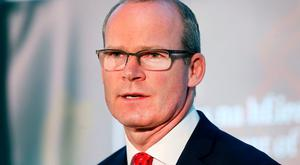 Tanaiste and Minister for Foreign Affairs and Trade Simon Coveney. Photo: Steve Humphreys