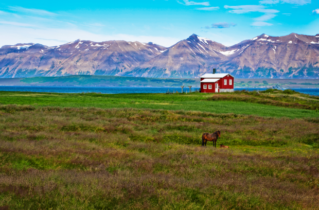The Icelandic diet is typically low in saturated fat, yet high in healthy omega 3 fatty acids. Photo: Deposit photos
