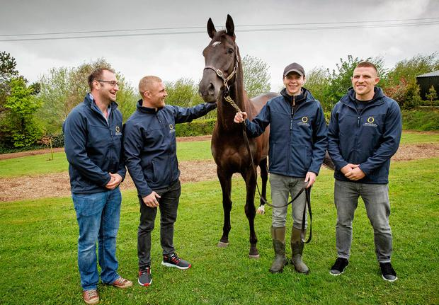 Former Munster player Johne Murphy, Keith Earls and Andrew Conway visited the yard of Joseph O'Brien (second from right) in Piltown, Co Kilkenny, to see Apparition as part of Horse Racing Ireland's 'Experience it' campaign which promotes racehorse ownership syndication.