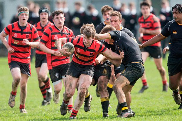David O'Keeffe of High School CBS on the charge against St David's.