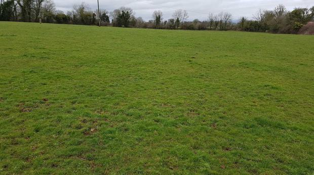 The property is situated over 6km from Tipperary town and less than 1.6km off the main Tipperary-Limerick road.