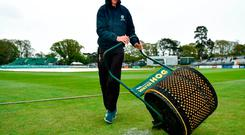 Groundsman Dave O'Halloran prior to play on day one