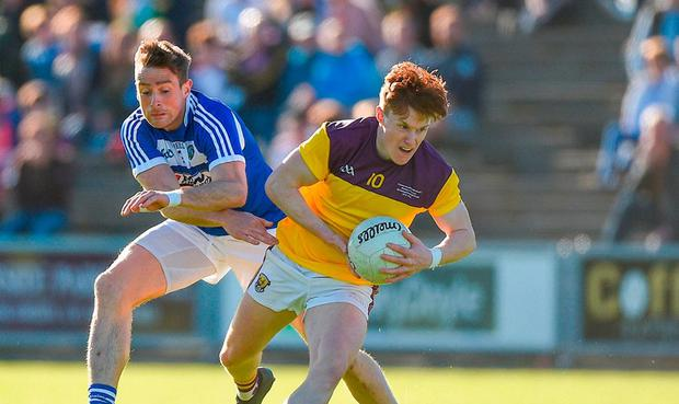 Laois fightback leaves Wexford to rue missed opportunity