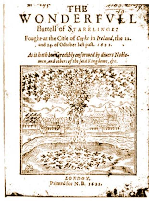 WONDERFUL: The pamphlet from 1622 tells of the 'battell'