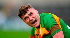 Jordan Morrissey of Carlow reacts during the Leinster GAA Football Senior Championship Preliminary Round match between Louth and Carlow at O'Moore Park in Laois. Photo by Harry Murphy/Sportsfile