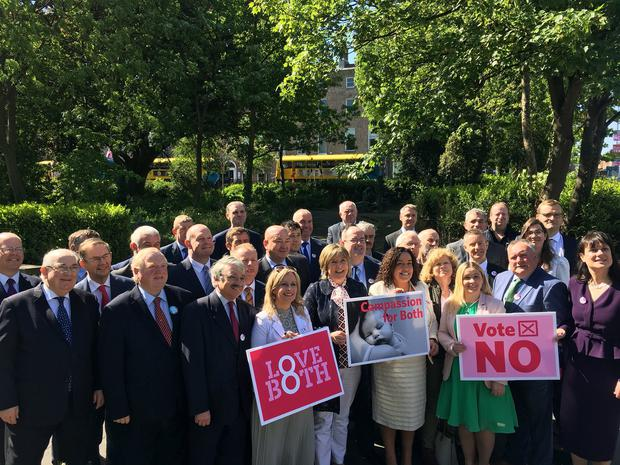 Members of Fine Gael, Fianna Fail, Sinn Fein and Independent TDs gathered in Merrion Square this morning to pose for a photograph supporting a No vote in the referendum.