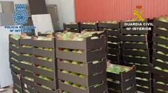 Police found the drugs hidden in a load of lettuces