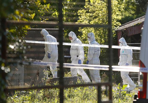 Crime scene investigators at the scene on the Clonee Road, outside Lucan where the body of a young girl has been discovered. Picture credit; Damien Eagers