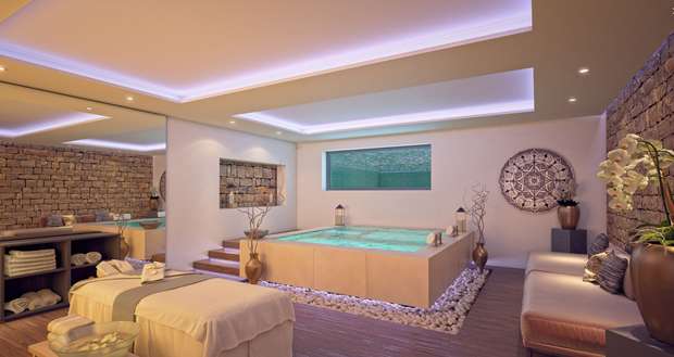 Conor McGregor and Dee Devlin will have the option to include a spa area on the ground floor. Photo: Realista