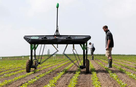 The prototype of an autonomous weeding machine by Swiss start-up ecoRobotix is pictured during tests on a sugar beet field near Bavois, Switzerland May 18, 2018. Picture taken May 18, 2018. REUTERS/Denis Balibouse