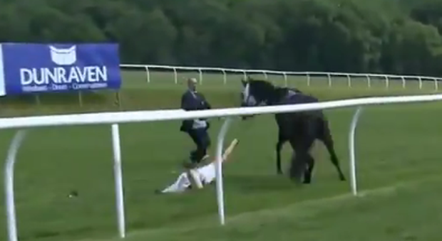 At The Races presenter Hayley Moore sensationally catches loose horse at Chepstow