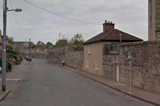 Gardaí are appealing for information on an alleged sexual assault which occurred on Mount Argus Road (pictured) (Photo: Google Maps)
