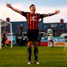Dan Casey celebrates scoring the late equaliser for Bohemians. Photo by Stephen McCarthy/Sportsfile
