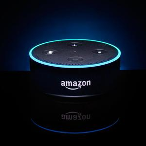 Amazon Alexa Echo: althouth the recorded conversation was not highly personal, the couple said they felt 'invaded'
