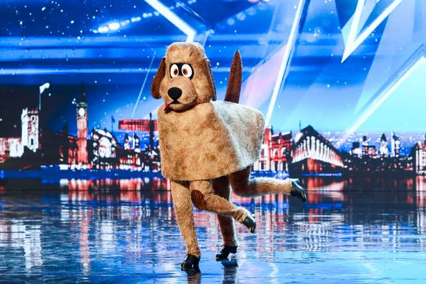 Dudley the dancing dog, Britain's Got Talent, TV3