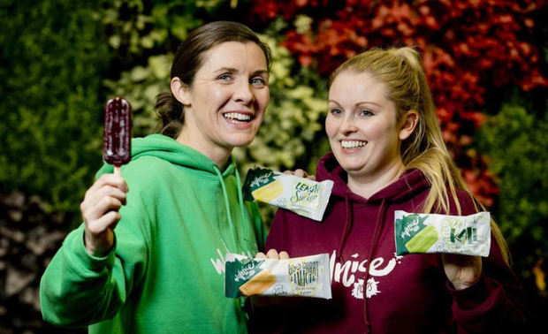 Limerick friends Trin O'Brien, an engineer, and BJ Broderick, a nutritionist, started their own range of Wellnice pops.