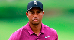 Tiger Woods wants to return to the major-winning club in next month's US Open. Photo: David Dermer/AP