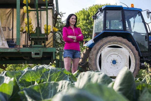 Nora Sheehan on her veg farm near Castletownroche, North Cork. Picture Clare Keogh