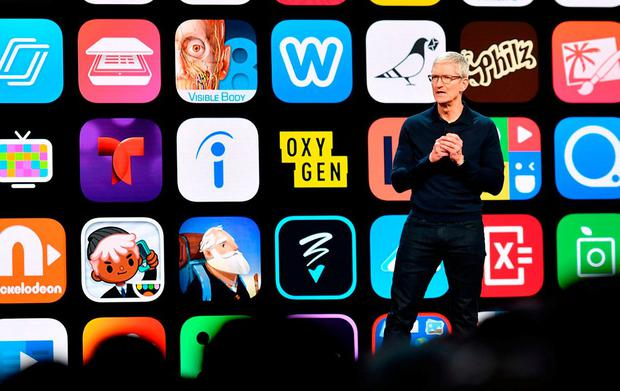 Apple boss Tim Cook speaks in San José. Photo: JOSH EDELSON/AFP/Getty Images