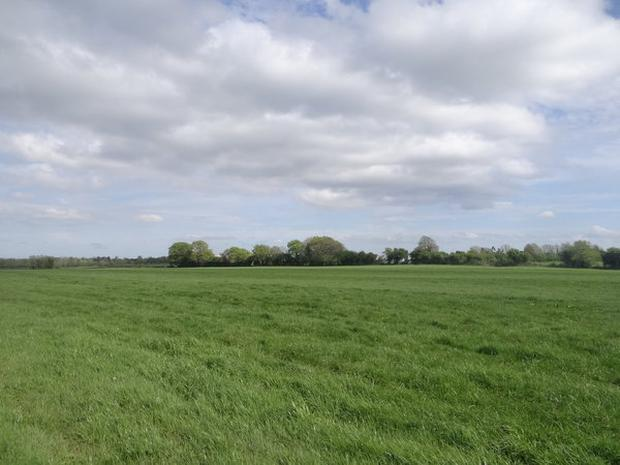 A 91ac grassland farm at Clarkville, just outside Edenderry in Co Offaly sold at auction last week making €1.115m or €12,250/ac.