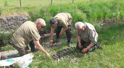 Inland Fisheries Officers assess the death toll.
