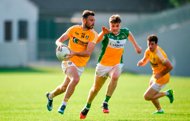 Matthew Fitzpatrick of Antrim in action against Johnny Maloney of Offaly. Photo by Sam Barnes/Sportsfile