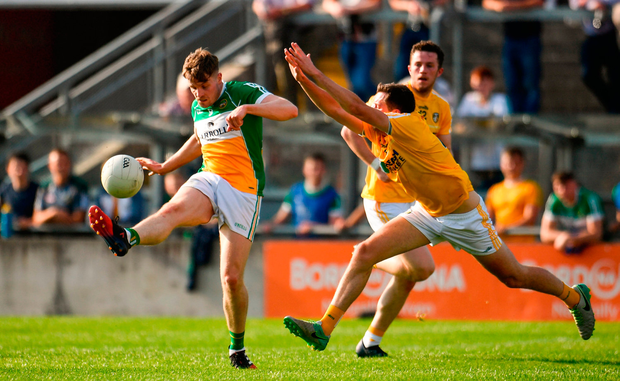 Johnny Maloney of Offaly in action against Niall Delargy of Antrim. Photo by Sam Barnes/Sportsfile