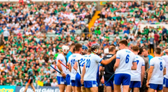 The overall attendances for the Leinster and Munster championships are likely to come in at around 390,000 – up 38pc on last year. Photo: Sportsfile