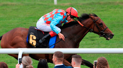 Dettori expects the son of Frankel to put his best foot forward as he bids for his sixth straight victory. Photo credit: Mike Egerton/PA Wire.