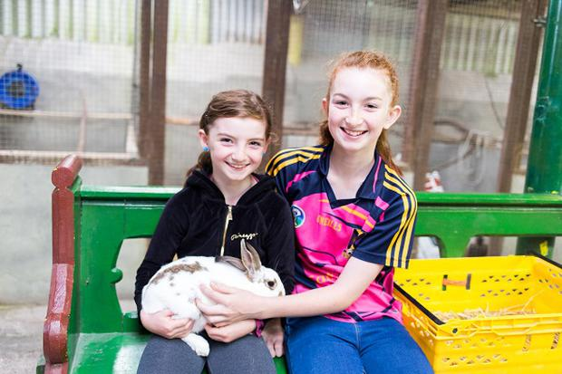 Children enjoying Leahy's Open Farm