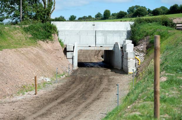 Joe Lucey's underpass on his dairy farm in Ovens, Co. Cork. Pic Michael Mac Sweeney/Provision