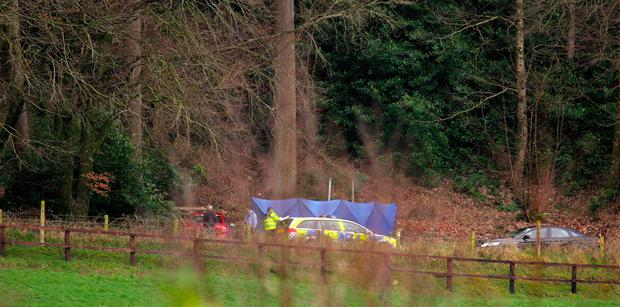 The scene at Ravensdale Park, close to Dundalk, where the bodies of Anthony Burnett and Joseph Redmond were found in a burned-out car. Picture: Tom Conachy