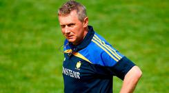 Donal Moloney is delighted with progress Clare have made this year. Photo: Ray McManus/Sportsfile