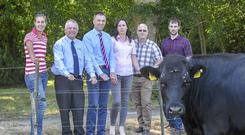 Ashleigh Fennell, Palatine, Co. Carlow, who plans to start milking in 2019, Gerry Boyle, Tom O'Dwyer and Kay O'Connell, Teagasc; with Eugene and Eoin Lawlor, Ballitore, Co. Kildare – recent dairy start up farmers.