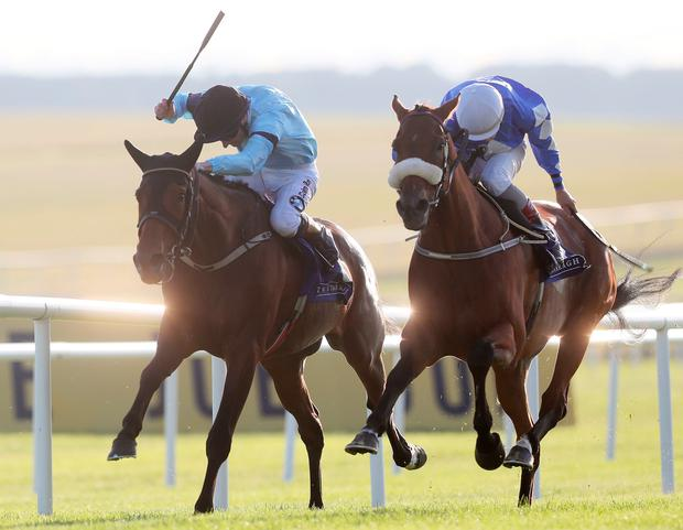Sea The Lion (right), with Ronan Whelan up, on the way to winning the 'Ragusa' Handicap from Gustavus Vassa (Declan McDonogh) at the Curragh. Photo: PA