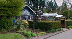 The man was fired from Vancouver's Stanley Park Teahouse Photo: Google Maps
