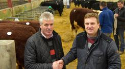 Shane Kilraine (right) is congratulated on his election as President of the Mid & Western Livestock Improvement Society by outgoing president Paddy Farrell