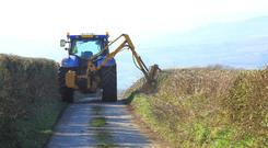 As it stands, hedge-cutting and gorse burning are prohibited between March 1 and August 31.