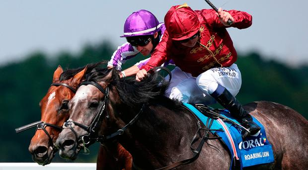 Roaring Lion edges duel to deny O'Brien by neck
