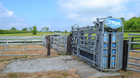 Stunning Westmeath organic farm with top class cattle handling facilities makes €8,000/acre.