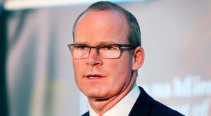 Tanaiste Simon Coveney. Photo: Steve Humphreys