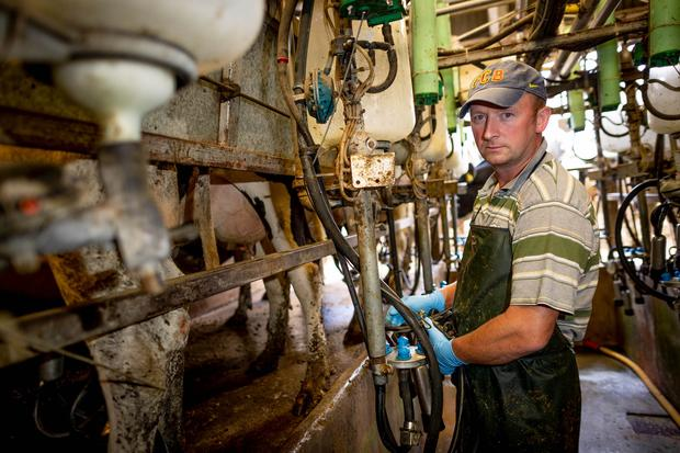 Jim Mulhall, a liquid milk supplier to Glanbia from Kilkenny. Image: Dylan Vaughan.