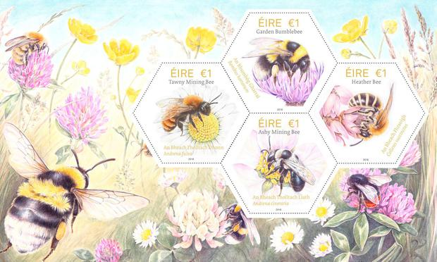 The new set of honeycomb-shaped stamps celebrating Ireland's native bees are being released by An Post