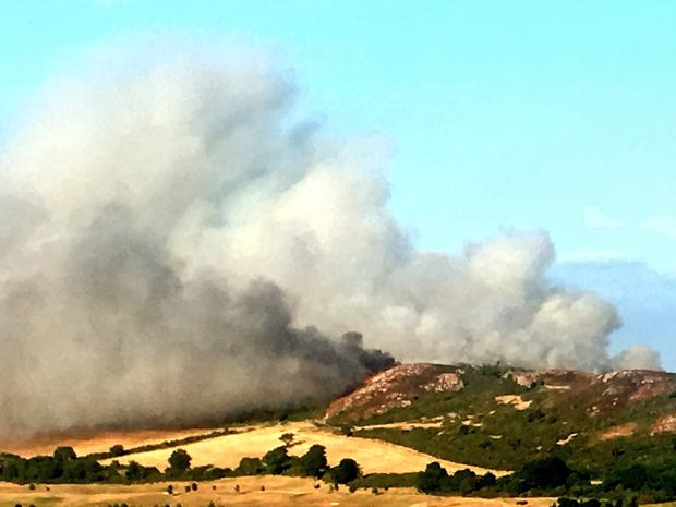 Bray gorse fire: Wicklow Fire Service