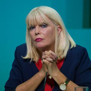 Minister of State for Higher Education Mary Mitchell O'Connor has targeted a range of gender issues. Photo: David Conachy